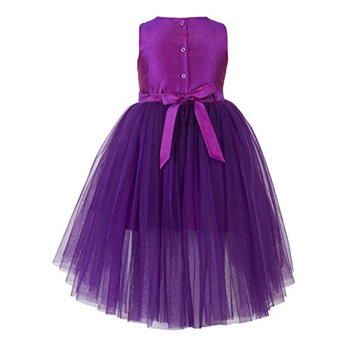 purple hi low flower girl dress back